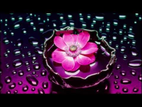 Andy Blueman - Florescence (Original Mix)