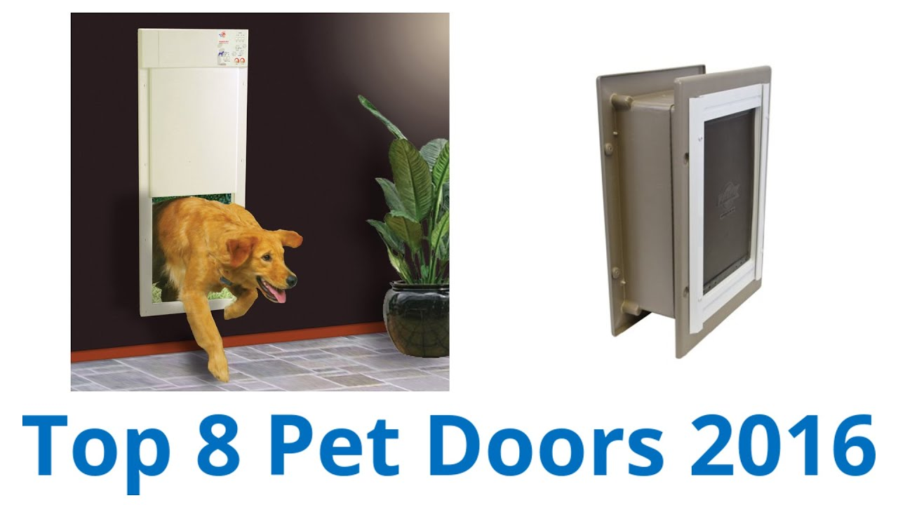 doors pet door white ip by com walmart plastic guardian to petsafe pets medium lbs for