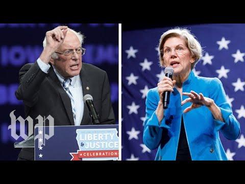 Michael Berry - The Democrat-Socialist Cat Fight Between Warren & Bernie