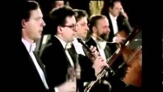 Mozart / Symphony No. 25 in G minor, 1st Movement K. 183/173dB