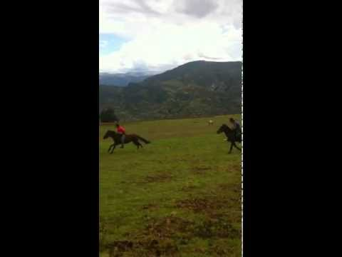 Horse Racing In The Mountains Of Peru.  300.MOV