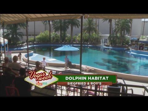 The Marine Habitat at the MGM Mirage