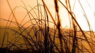 Texel Landal Sluftervallei - Sfeer Impressie -HD-