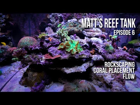Matt' Reef Tank | Episode 6 | Rock-scaping, Coral Placement, Flow