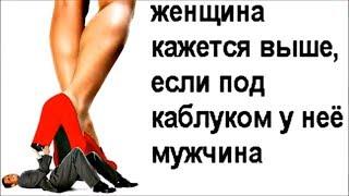 СМЕШНЫЕ анекдоты про ПОДКАБЛУЧНИКОВ. Юмор в картинках. Выпуск 17.
