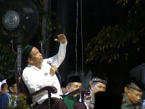 Pengajian Lucu Habib Umar Muthohar tentang Tawon