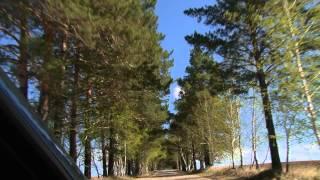 Саватеевка. Зеленая Арка.(, 2015-07-04T02:20:26.000Z)