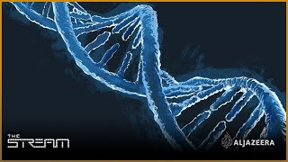 The Stream - Science and security of DNA testing