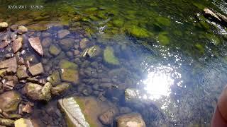 Trout Fishing below Smith Lake Dam