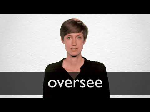 Oversee definition and meaning | Collins English Dictionary