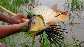 Old Traditional  Fishing Technique | Primitive Fishing After Rain Video