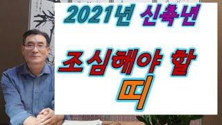 2021년 신축년도에 조심해야할 띠? 말띠,용띠,양띠,개띠 2021년 신축년운세