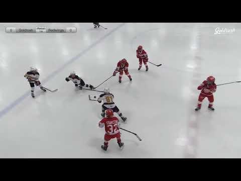 California GoldRush vs Red Wings 1-27-18
