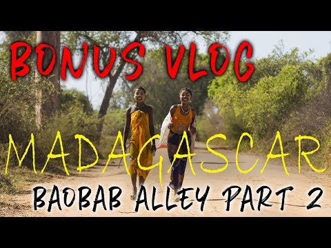 Bonus Vlog MADAGASCAR Wildlife & Baobab Alley Part 2