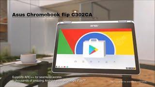 asus chromebook flip c302ca commercial