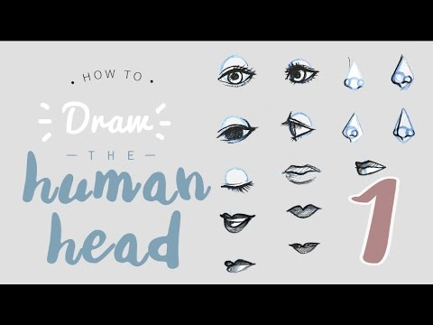HOW TO draw a head/face || PART 1