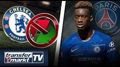 Transfersperre für Chelsea – Hudson-Odoi zu PSG? | TRANSFERMARKT