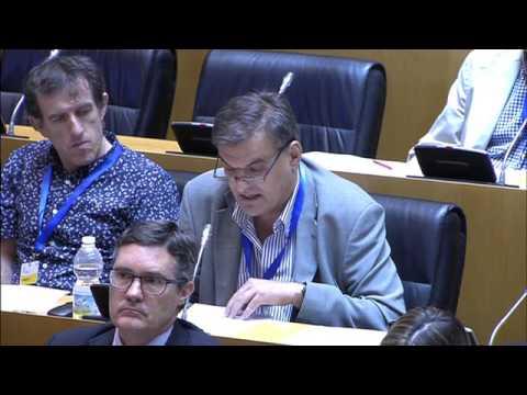 Recomendaciones Consejo Cooperación a V Plan Director. Intervención Pablo Araujo, director de ISCOD.