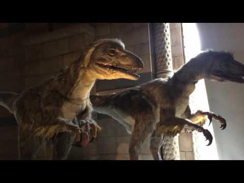 Deinonychus. Real Life Jurassic Park Velociraptors!