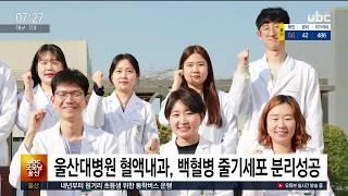 울산대병원 혈액내과, 백혈병 줄기세포 분리성공  202…