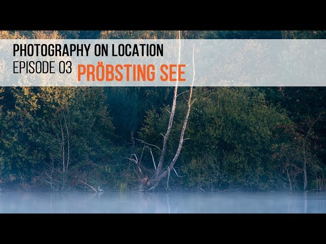 Photography on location - Episode 03 - Autumn photography at Pröbsting See (Hoxfeld, Germany)