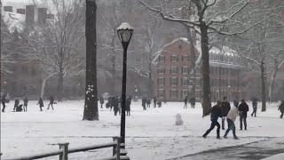 Yale Snow Day