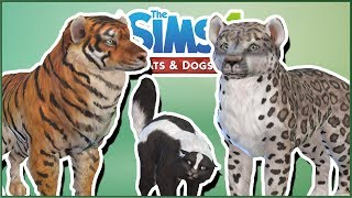 Tigers, Snow Leopards, and Skunks - Oh My!! 🌿Sims 4 Wild Animal Gallery Safari!!