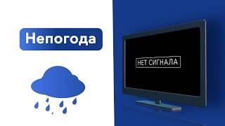 Надпись «Нет сигнала» на экране. Как восстановить просмотр?