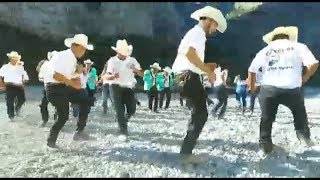 Karrileros del Norte - Huapango Los Vicios   (Video official)
