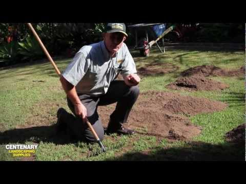 Top Dressing And Top Soiling Your Lawn