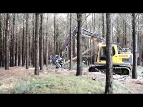 Cabeçote Harvester Logset TH45 Minusa - No Brasil