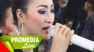 Video Pengantin Baru - Dewi Kirana 23-8-2014 download MP3, 3GP, MP4, WEBM, AVI, FLV Juli 2018