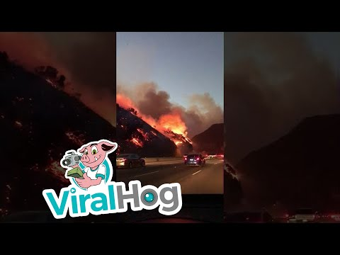 Brentwood Fires in Los Angeles  || ViralHog