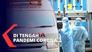 Kemenkes Sebut Ada 65.000 Lebih Kasus Demam Berdarah di Indonesia