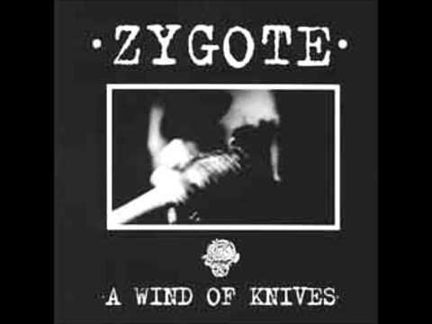 ZYGOTE-Here Come