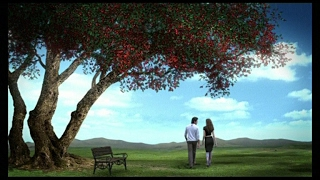 OLWELL 4 SEASONS TVC, Directed By Asim Raza (The Vision Factory)