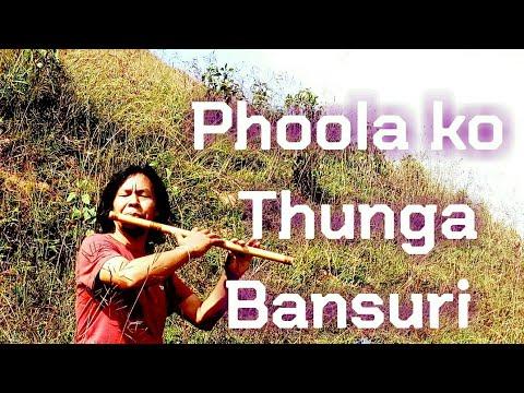 Phoolko Thunga - Nepali Bansuri  凉凉 竹笛深情吹奏  By Raman Maharjan