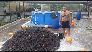 Grape wine. Part 1. ENG SUB.