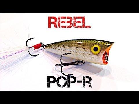 Lure Review- Rebel Pop-R
