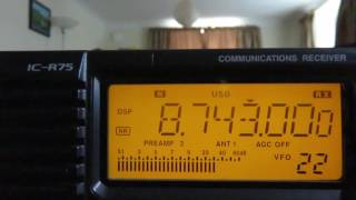 I was asked some time ago by Oxford Shortwave Log to do a compariso...