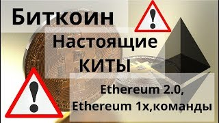 биткоин. Настоящие КИТЫ. Ethereum 2.0, Ethereum 1x, команды. Курс биткоина