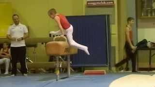 Bryson South Sokol Gymnastics Meet 2014-Pummel Horse/Mushroom