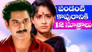 Pandanti Kapuraniki 12 Sutralu Full Movie    Suman, Vijaya Shanthi    Telugu Hit Movies