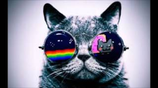 Cat Dealers - Your Body  [Dj Anonim]