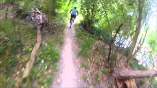 Terry Hershey Park Hike & Bike - The Anthills