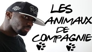 PAT - LES ANIMAUX DE COMPAGNIE
