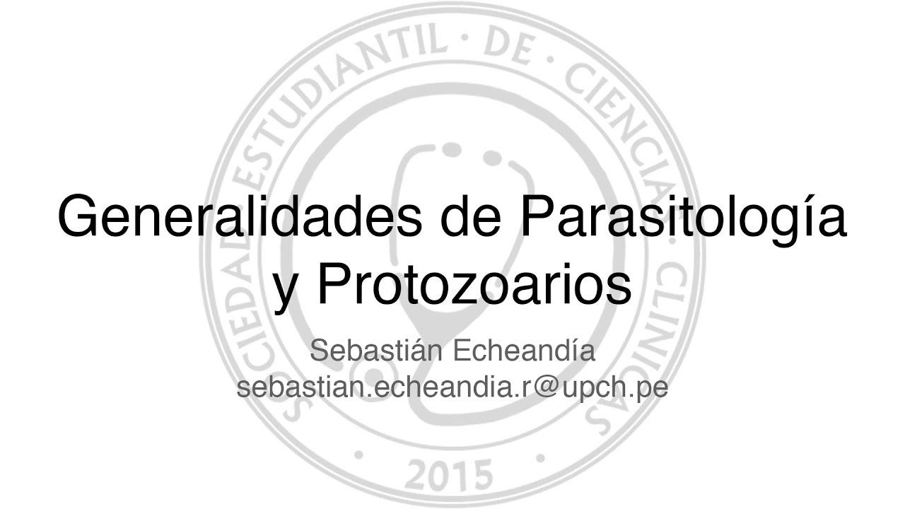 protozoarios parasitologia clinica