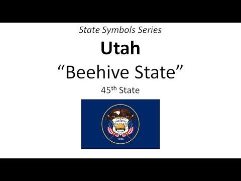 State Symbols Series - Utah