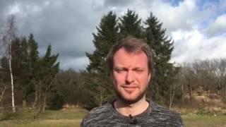 Debatpilot Peter Westermann