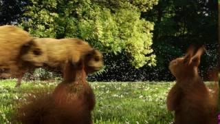 Reklama piwa Żubr 15' - Dwa Szybkie Żubry wracają [Żubr official] 2017